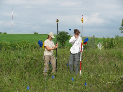 two researchers surveying echinacea
