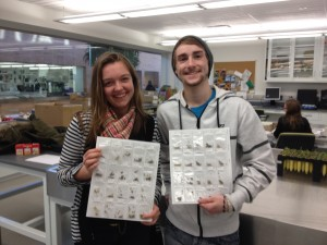 Amber & Tyler show the achene samples they prepared for x-raying