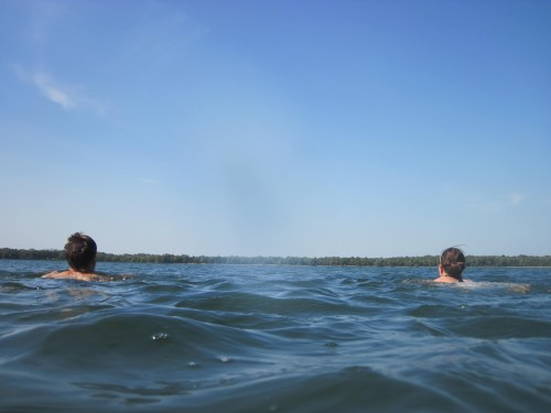 Intrepid swimmers bob along swimmingly