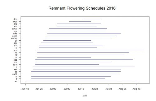 Blue line segments represent the duration of flowering for each remnant population. Click to enlarge!